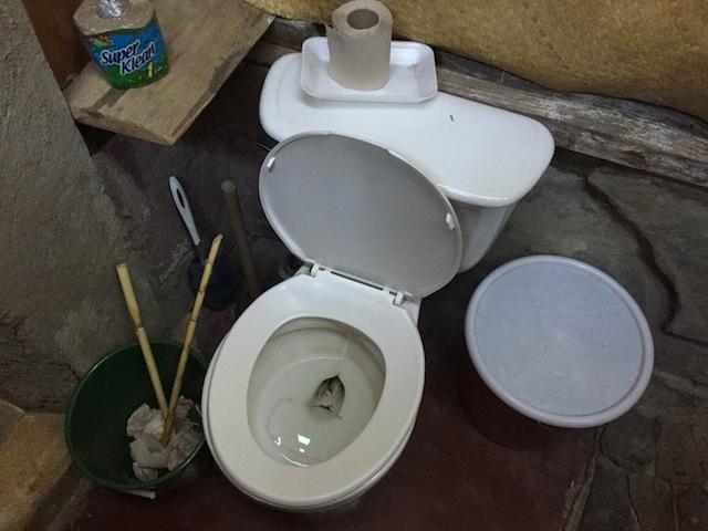 Toilet_Pix